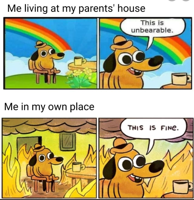 Me living at my parents house This is unbearable. Me in my own ace IS Fine, memes