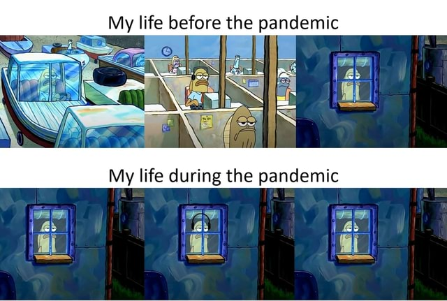My life before the pandemic ff wo a My life during the pandemic if memes