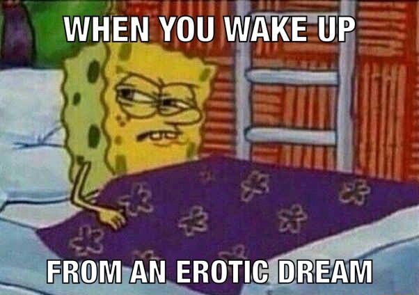 WHEN YOU WAKE UP FROM AN EROTIC DREAM meme