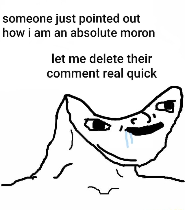 Someone just pointed out how am an absolute moron let me delete their comment real quick meme