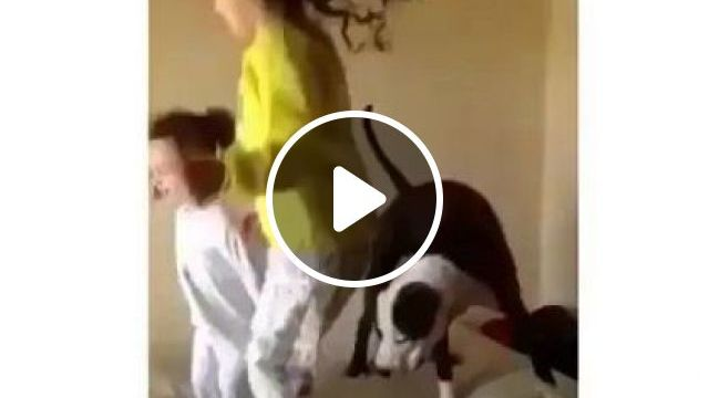 They Teach Their Dog - Video & GIFs | Animals & Pets, cute children, baby clothes, smart dogs, dog breeds
