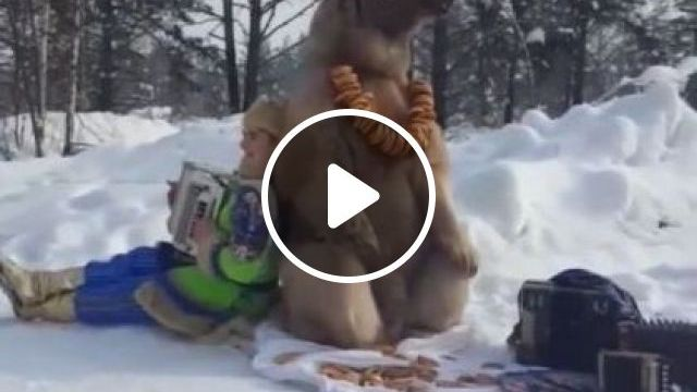 Winter, Bears And People Are Traveling Together - Video & GIFs   animals & pets, bears, people, friendly, travel russia