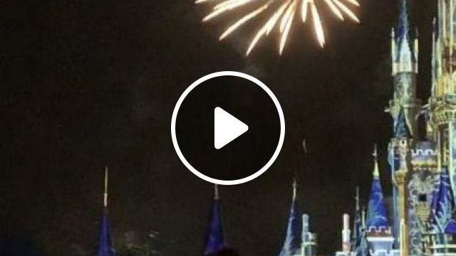 America Travel, Oh How Are You Flying .. In Magic Kingdom - Video & GIFs | nature & travel, america travel, magic kingdom