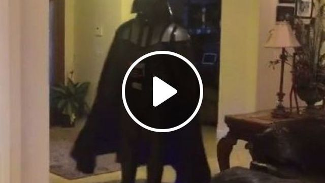 Force Is Not Strong With This One - Video & GIFs | sports, fashion clothes, luxury apartments