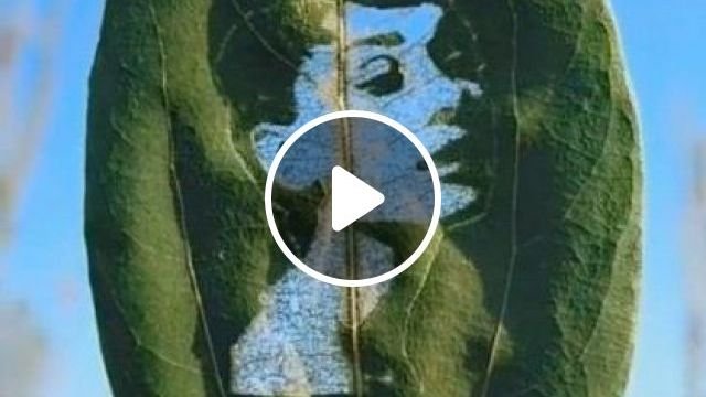What Do You See - Video & GIFs | art & design, performing arts, decorative art