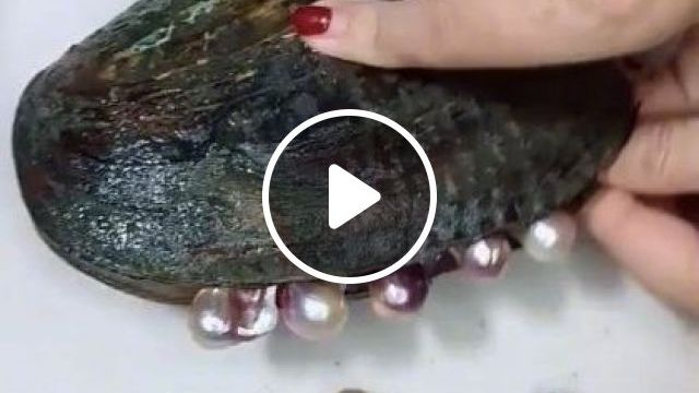 Pearls Are Very Beautiful - Video & GIFs   art & design, decorative jewelry, pearls