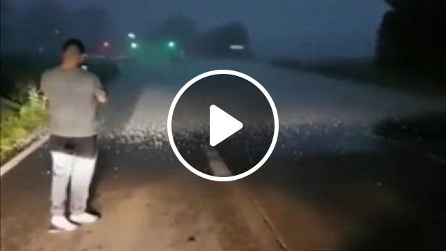 Standing At Storm Line - Video & GIFs   nature & travel, china travel, winter travel, fashion clothes