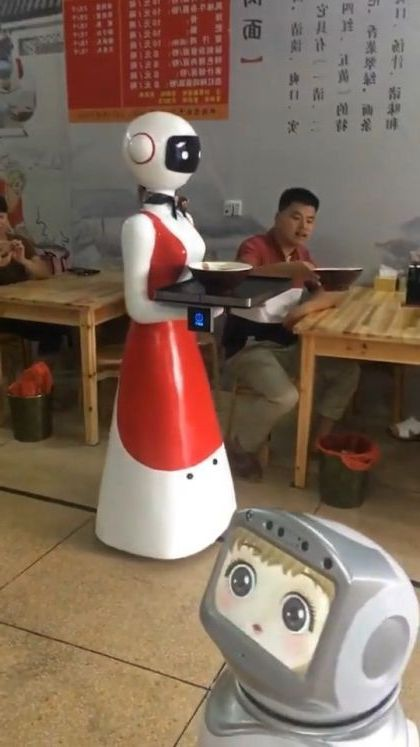 Robots serve food in Chinese restaurants - Video & GIFs | science & technology,serving robot,delicious food,chinese restaurant
