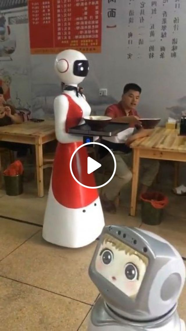 Robots Serve Food In Chinese Restaurants - Video & GIFs | science & technology, serving robot, delicious food, chinese restaurant