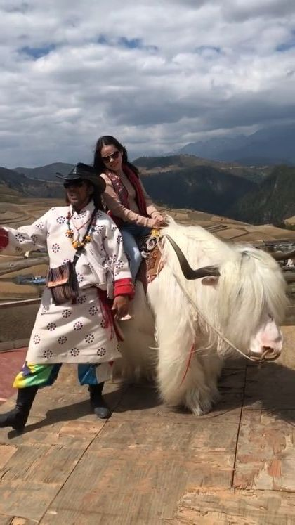 girl is traveling to Tibet and riding a cow - Funny Videos - funnylax.com - nature & travel,tibetan tourism,cow riding,clothes fashion,fashion shoes