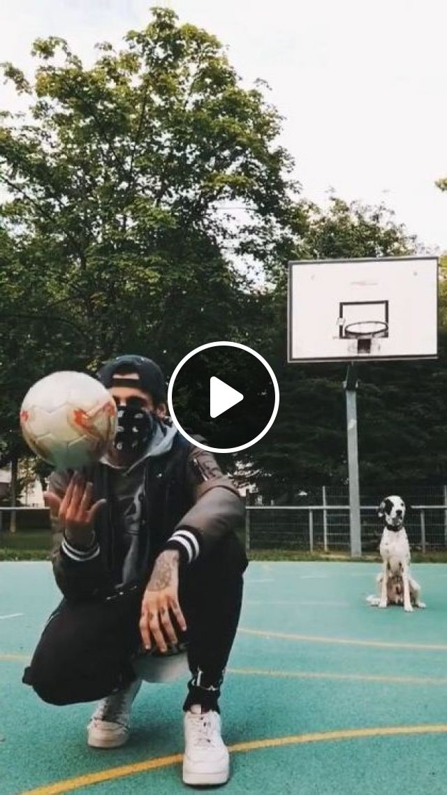 Smart Dog Playing Ball - Video & GIFs | animals & pets, smart dogs, sports clothes, sports shoes