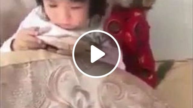 Monkey and baby  - Funny Videos - funnylax.com - animals & pets,monkeys,babies,baby fashion clothes,smart phones