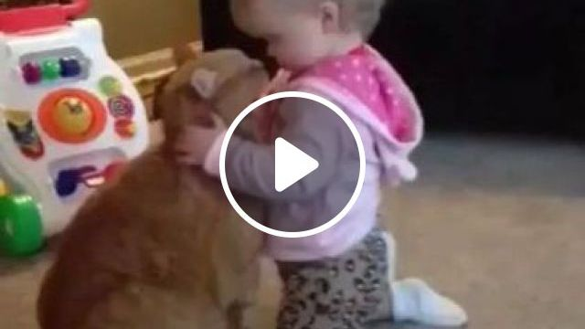Giant Cat And Baby - Video & GIFs | animals & pets, cute cats, cute babies, cats care