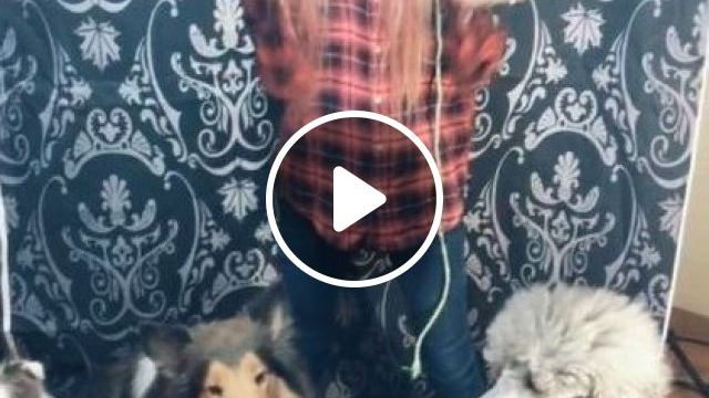 Dance In Family - Video & GIFs | animals & pets, caring animals, cute girls, fashion clothes