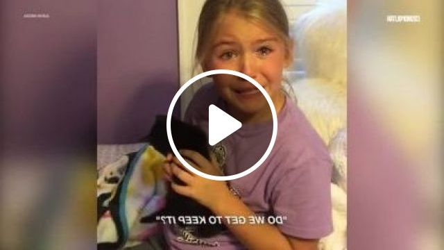 child is happy to be given a black cat in bedroom, Animals & Pets, Happy children, children's clothes, black cats, cute cats, bedroom furniture