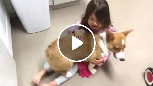 Baby Is Happy To See Dog Again - Video & GIFs | Animals & Pets, yellow dogs, lovely dogs, dog breeds, cute babies, baby clothes, luxury apartments