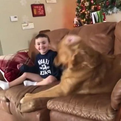 in living room,baby and dog play with music