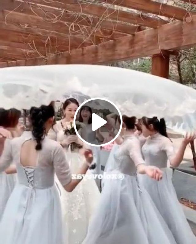 Photographer Is Taking A Picture Of Bride With A Beautiful Wedding Dress - Video & GIFs | fashion & beauty, photographer, taking photos, bride, wedding dress