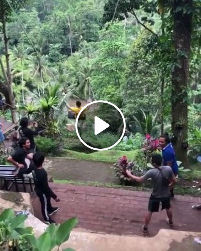 Tourists Are Playing In Forest - Video & GIFs | nature & travel, tourists, fashion men and women, camera, high definition, forest