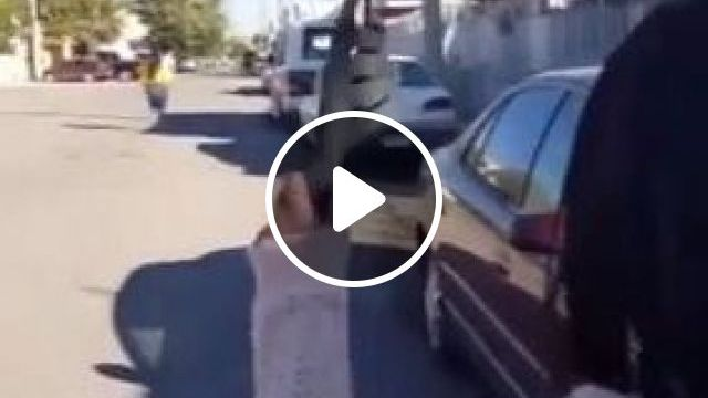 Girl playing on the street - Funny Videos - funnylax.com - fashion & beauty, cute girls, women clothes, Japanese streets, luxury vehicles