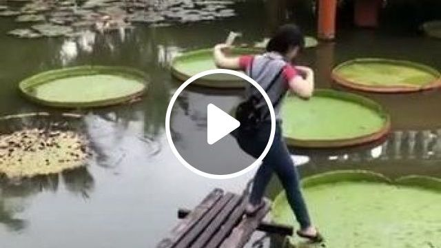 Girl Trying To Stand On Lotu Leaf In Lake - Video & GIFs | nature & travel, girls, clothes fashion, luxury handbags lotus leaf, in the lake, beautiful scenery