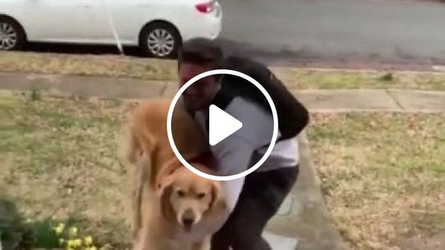 dog was happy when a man just got off  car - Funny Videos - funnylax.com - animals & pets,dog dogs,dog breeds,men,men's fashion,luxury cars,luxury vehicles