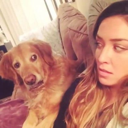 dog was surprised to see girl in living room