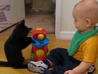 Cat likes to play toys with baby in bedroom