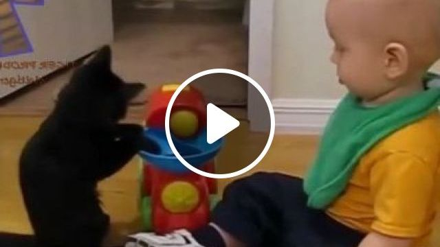 Cat Likes To Play Toys With Baby In Bedroom - Video & GIFs | animals & pets, cats, cat breeds, baby fashion babies, baby toys, bedroom, furniture
