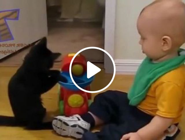 Cat Likes To Play Toys With Baby In Bedroom - Video & GIFs   animals & pets, cats, cat breeds, baby fashion babies, baby toys, bedroom, furniture